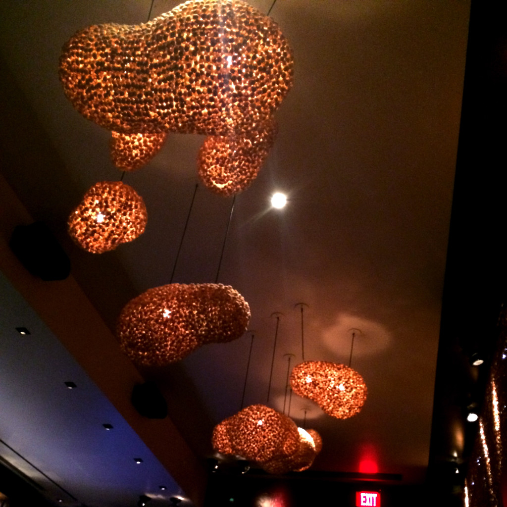 The bar/ lounge room has incredible light fixtures.